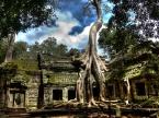 ta-phrom,-Angkor