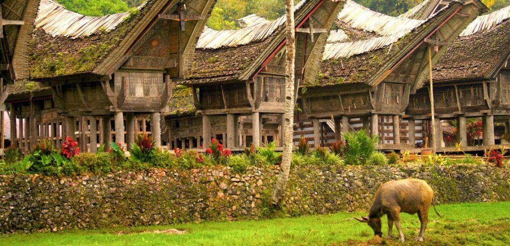 abitazioni tana toraja indonesia